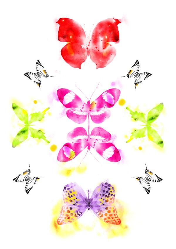 butterfly-glimmer