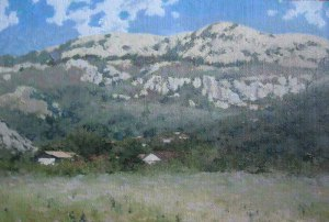 Oil landscape Montenegro mountain